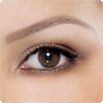 A perfectly-defined brow by Anastasia.