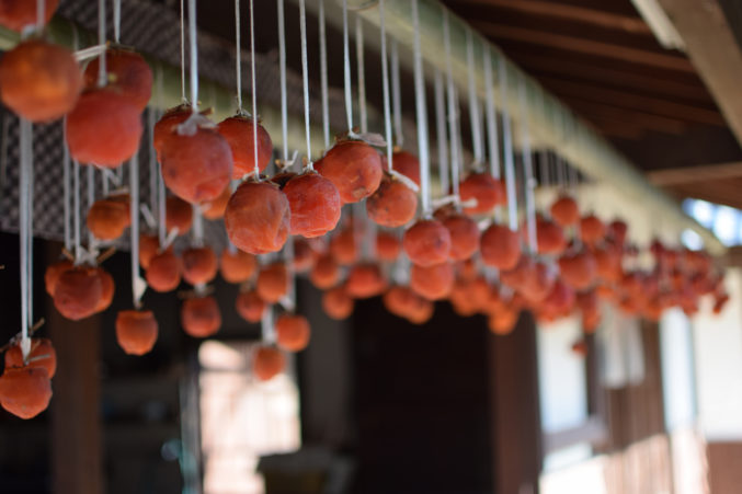Drying persimmons. (Photo by Flickr user Sayurimats.)