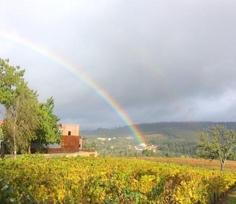 Rainbow over Quinta da Lixa, Vinho Verde, Portugal; photo by Hayley Hamilton Cogill