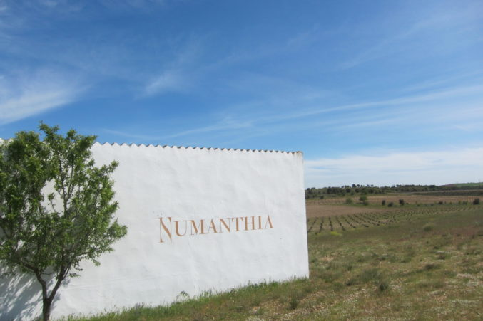 Numanthia vineyards in the Toro region of Spain