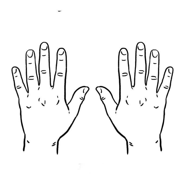 Fig 2.: Hands