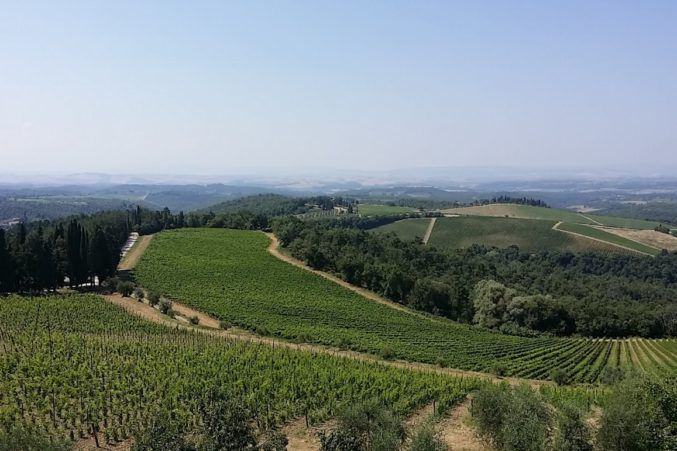 Chianti Classico, Tuscany, Italy; all photos by Hayley Hamilton Cogill