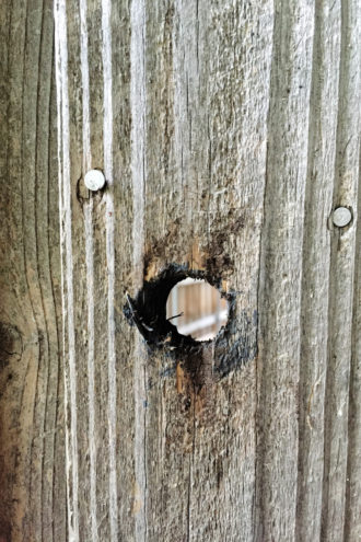 Ira's son found a suspicious hole had been drilled in his father's backyard fence.