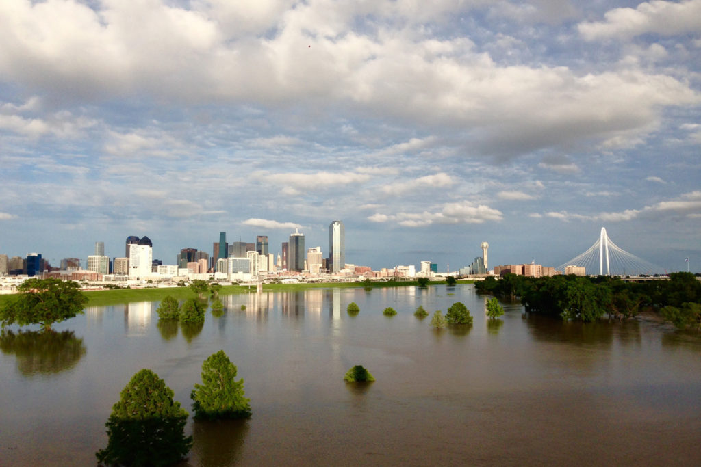 wild-dallas-trinity-river-2