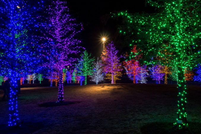 Christmas Lighting.Where To See The Best Christmas Lights In Dallas D Magazine