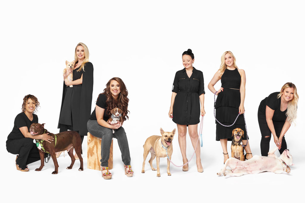 2d3333a1d691 The Dog Advocates and  Dogpreneuers  of Dallas - D Magazine