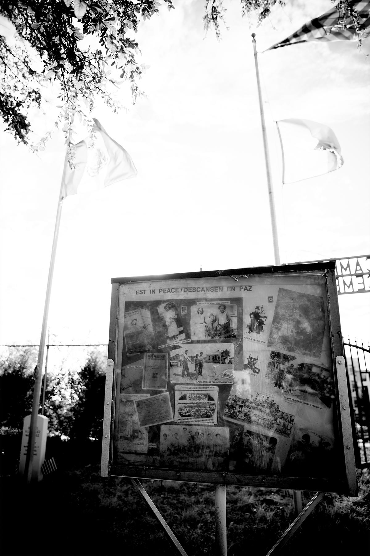 Campo Santo de Cemento Grande picture box