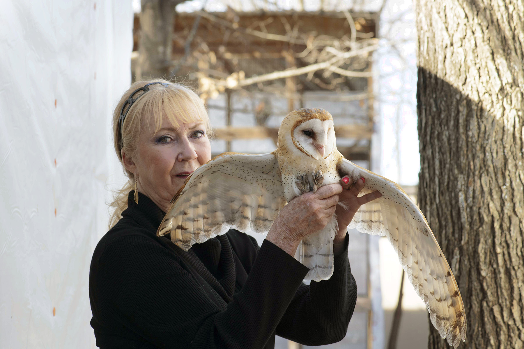 kathy roger and owl