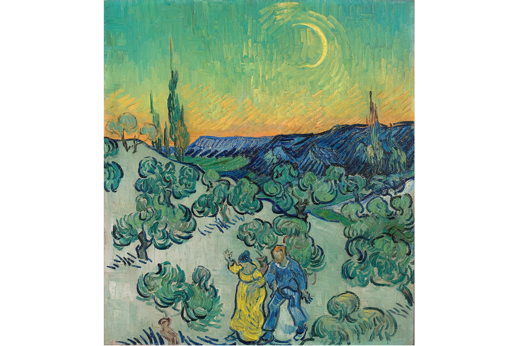 Van Gogh and Olive Groves
